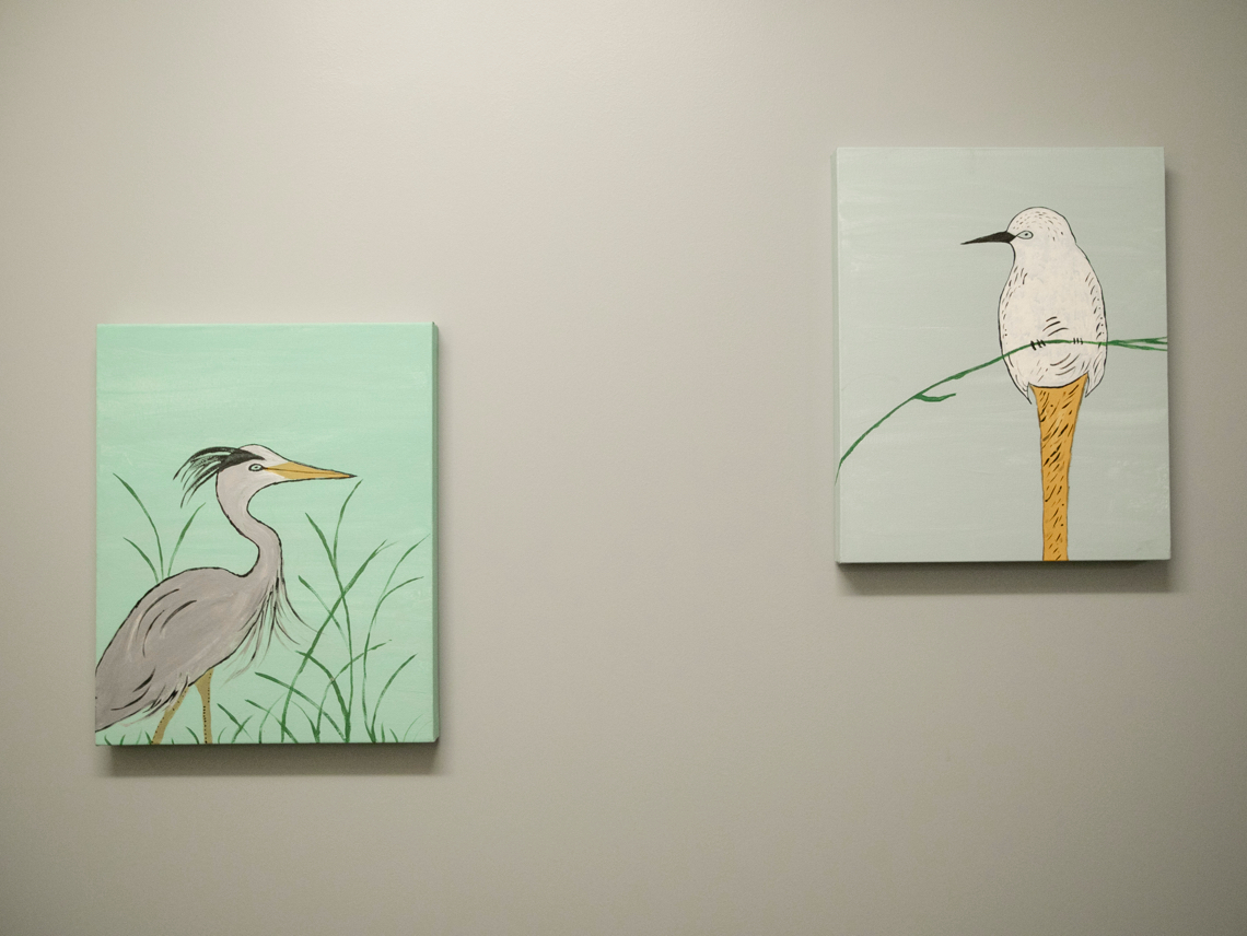 Paintings of birds on a wall
